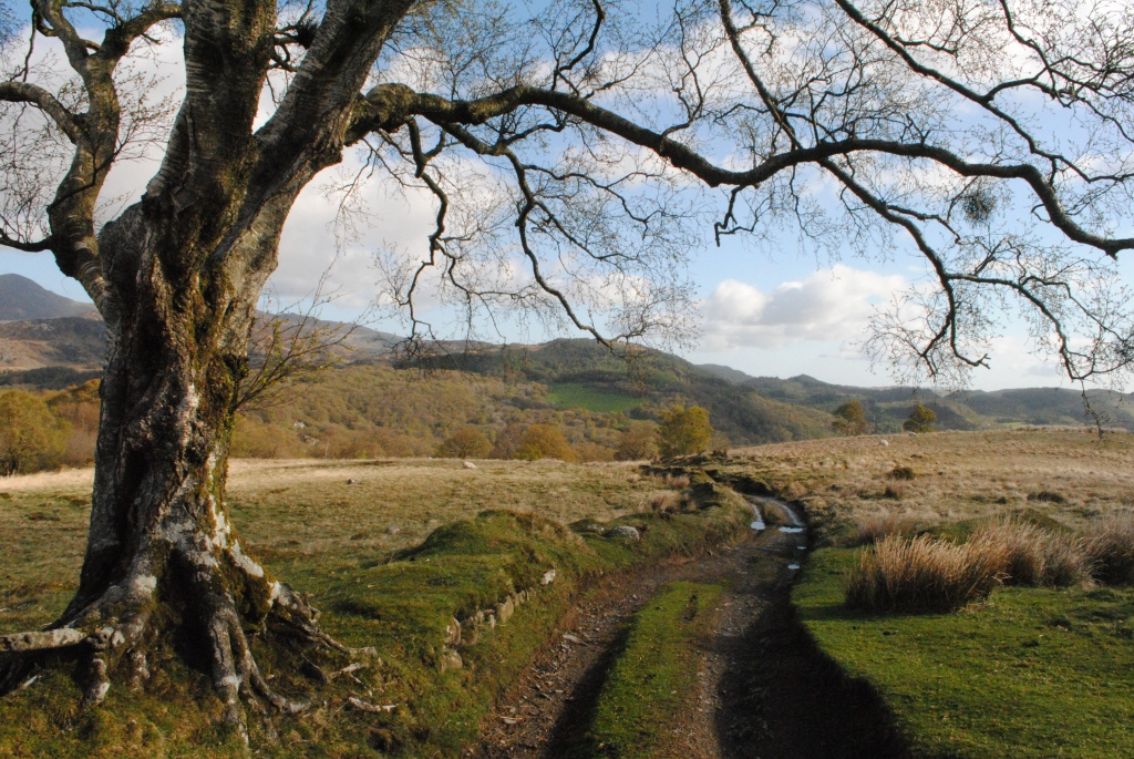 14 The track down to Capel Curig